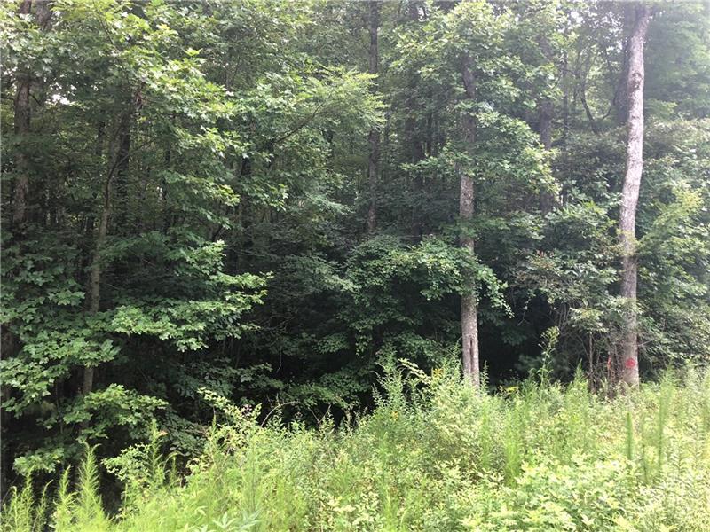 Chopped Oak Road, East Ellijay, GA, 30540 - Search - Skyland